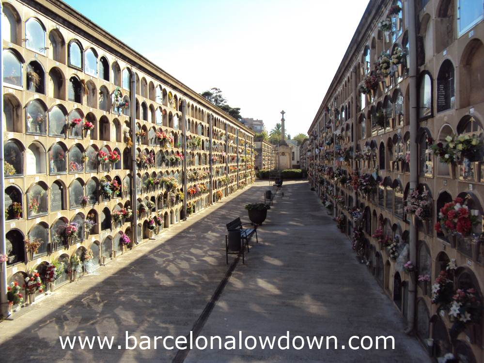 Rows of niches with plastic flowers in Poblenou's graveyard