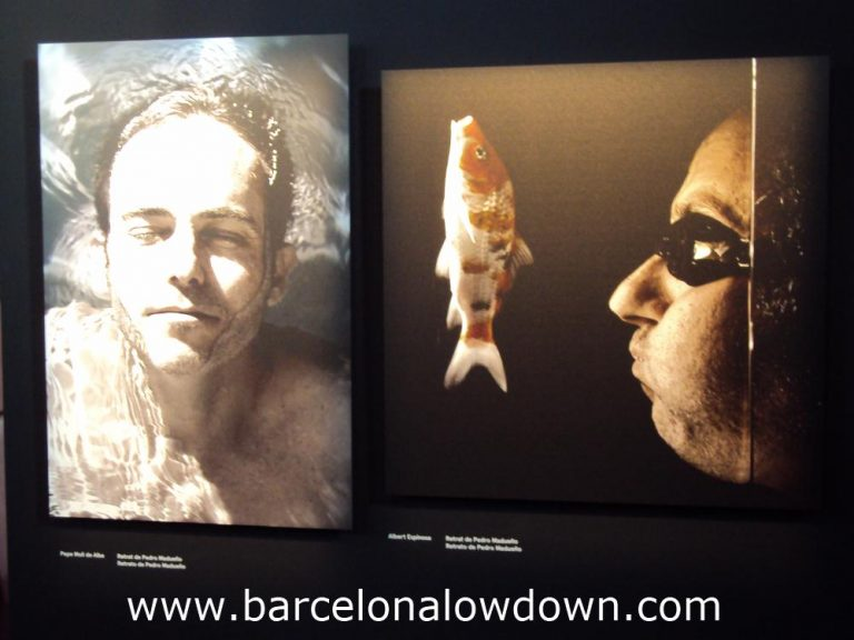 2 Portraits by Spanish artist Pedro Madueño, pert of the Agua, Aguas art exhibition at the Agbar Tower, Barcelona