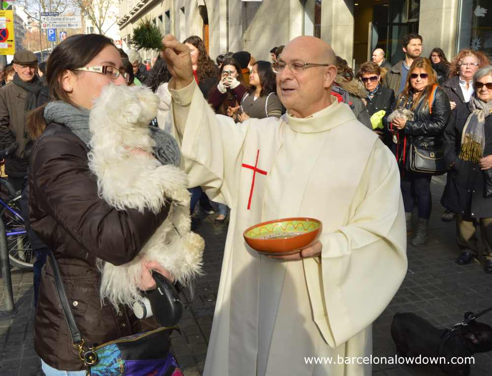 A small dog being blessd by a priest in front of a chrch in Barcelona Spain
