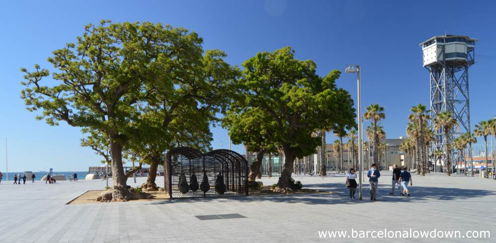 The A Room Were it Always Rains sculpture nestled below 4 olive trees and the Port Cable Car in Barcelona, Spain