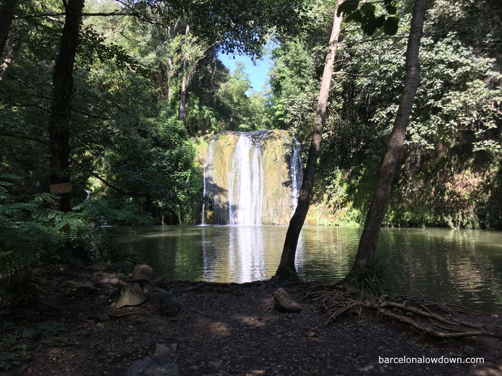 Waterfalls surrounded by trees in the Gorg de la Plana, Spain